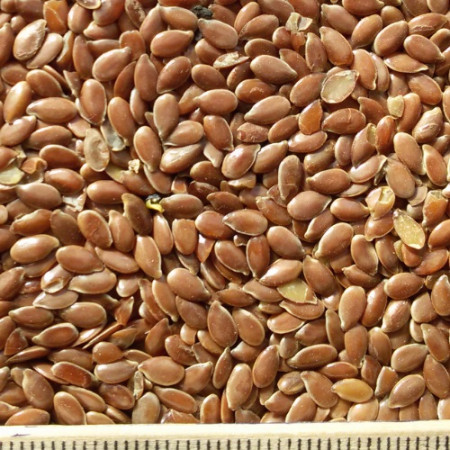 oi-flax-oil-brown1