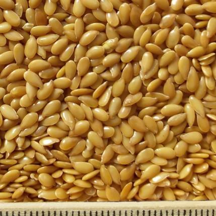 oi-flax-oil-gold2
