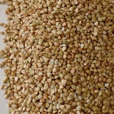 ce-buckwheat