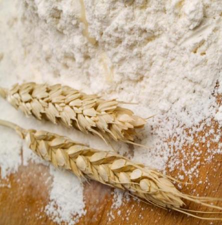 fo-flour-wheat2