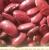 thumb_pu-beans-red2