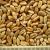 thumb_ce-wheat2